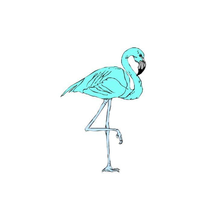 Acervo Flamingo Azul